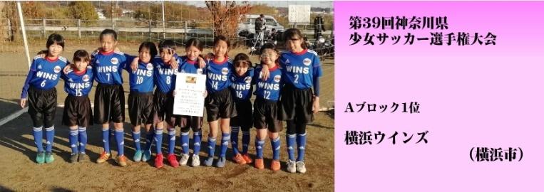 神奈川県少女サッカーU-10大会(ブロック1位)_f0375011_21504599.jpg