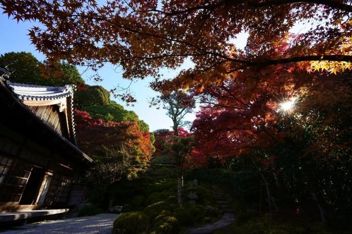 金福寺_e0177413_16542474.jpg