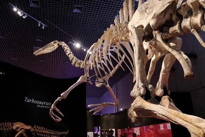 恐竜博2019~デイノケイルス【前編】_b0355317_11420609.jpg