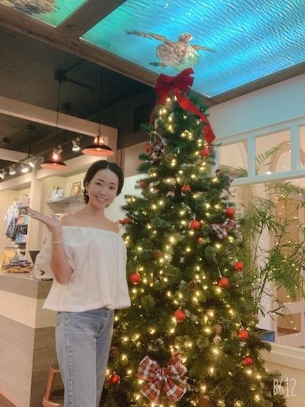 キホロカイ「kiholokai」のクリスマスツリー〜〜🎶_c0187025_13443081.jpg