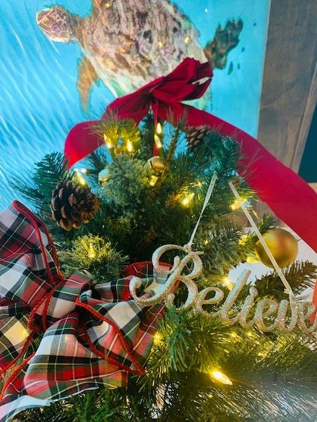 キホロカイ「kiholokai」のクリスマスツリー〜〜🎶_c0187025_13470181.jpg