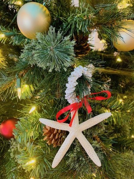 キホロカイ「kiholokai」のクリスマスツリー〜〜🎶_c0187025_13474197.jpg