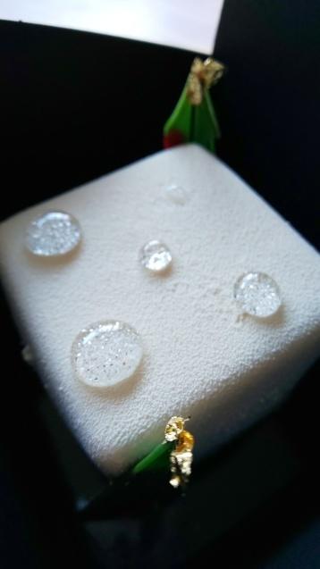 嬉しいプレゼント  「ホワイトフォレスト」_c0124528_09121034.jpg