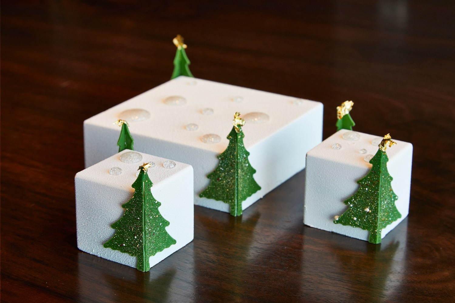 嬉しいプレゼント  「ホワイトフォレスト」_c0124528_09160633.jpg