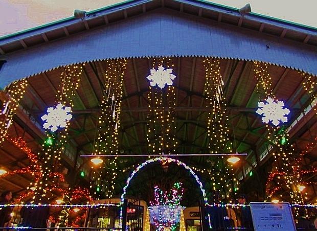 12月14日 レトロな駅舎にて、クリスマスステーションin八瀬_f0227828_08293783.jpg