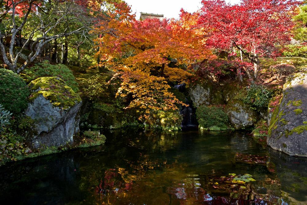 箱根美術館、前編_e0367330_17113317.jpg