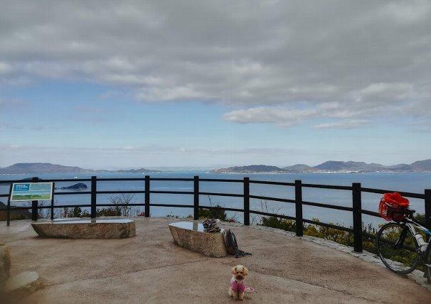 まったりセットを持って、今日も、まろたんとあじ竜王山公園へ。_b0149340_17170056.jpg