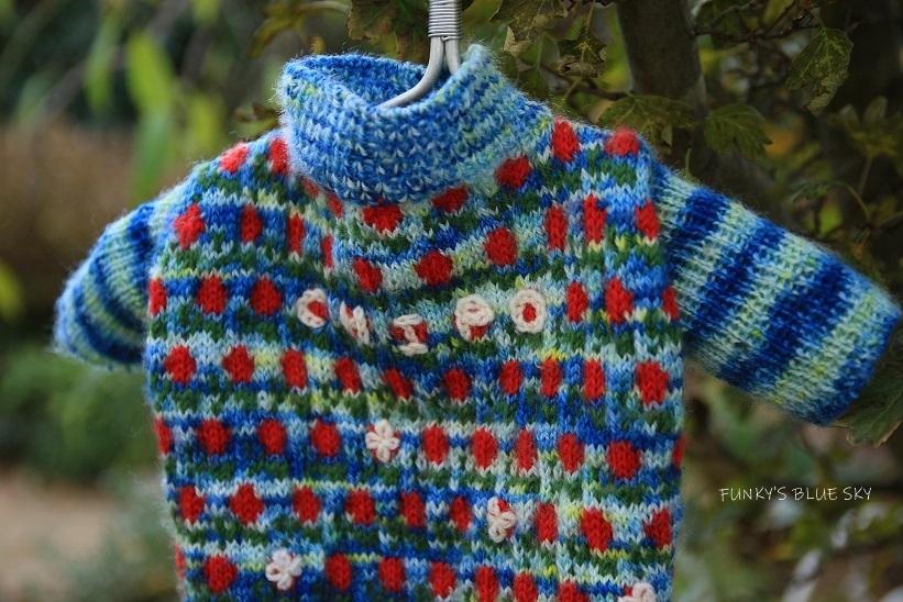 11枚目のセーター_c0145250_10592542.jpg