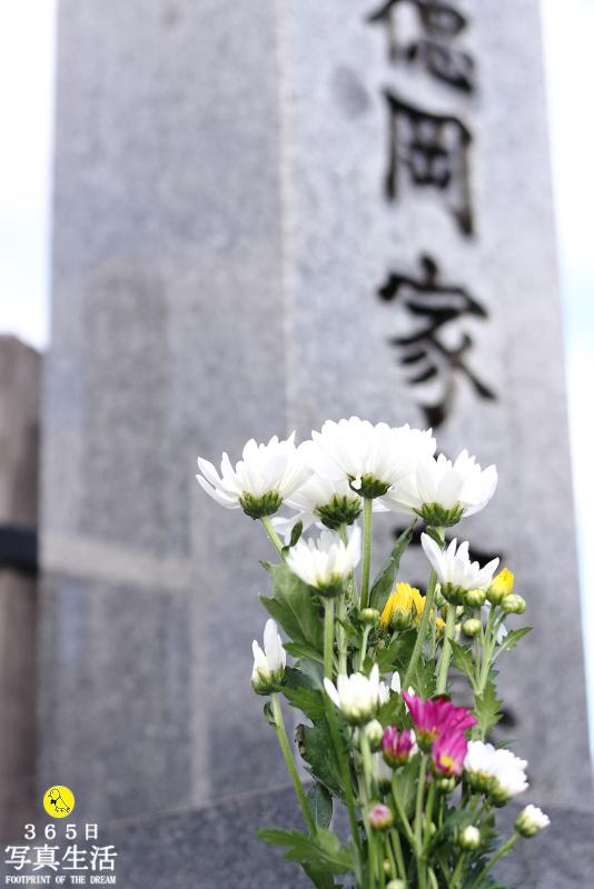 年の瀬前の墓参り_f0358558_16561894.jpg