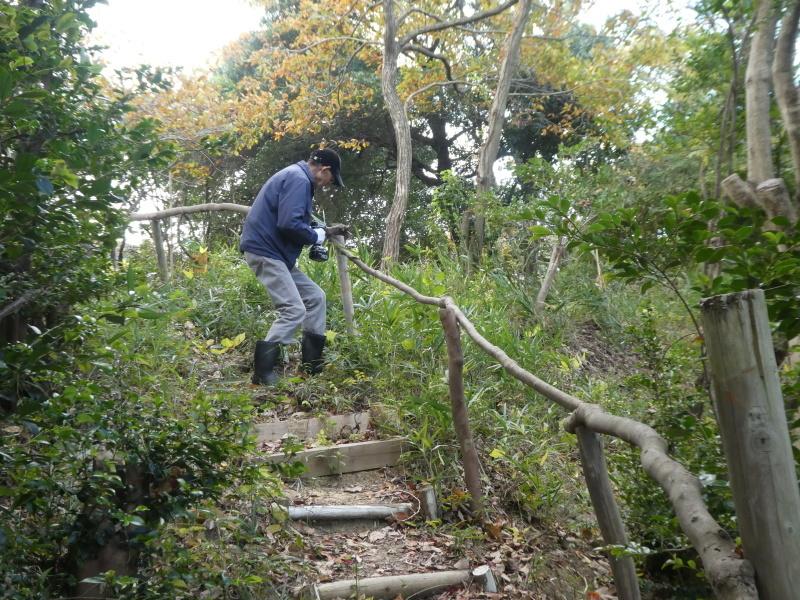 「みんなでワカメを育てよう!わかめ種付け」イベント準備手伝いと      草刈り・間伐材整理の定例活動・・・うみべの森_c0108460_17403160.jpg