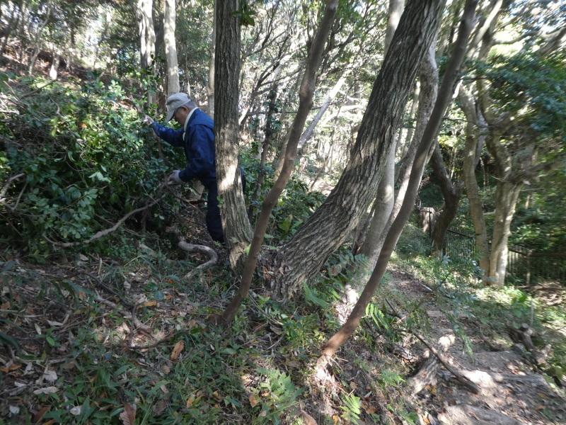 「みんなでワカメを育てよう!わかめ種付け」イベント準備手伝いと      草刈り・間伐材整理の定例活動・・・うみべの森_c0108460_17441685.jpg