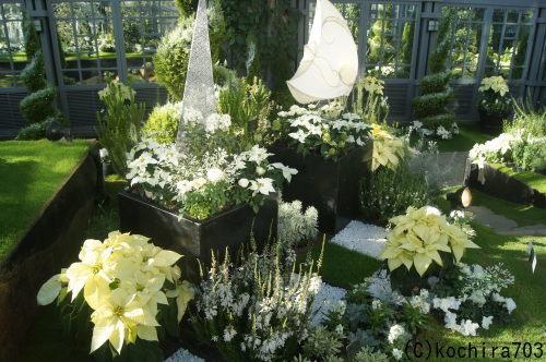 ホワイトクリスマス~奇跡の星の植物館_e0181373_20150371.jpg