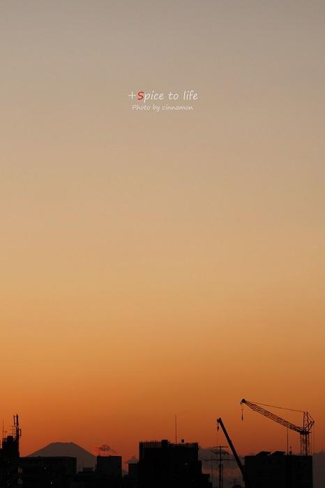 Tokyo 富士san SPOT #6_f0326278_22335856.jpg