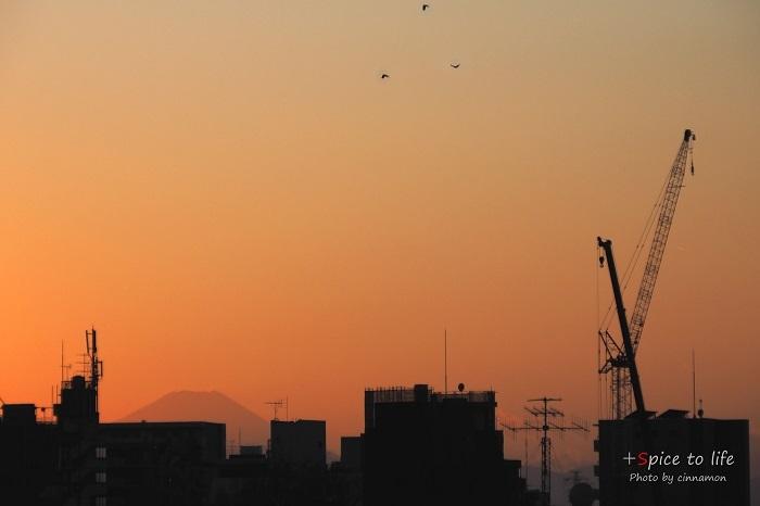 Tokyo 富士san SPOT #6_f0326278_22340831.jpg