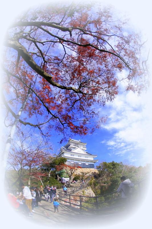 岐阜城とその周辺_f0367980_15043362.jpg