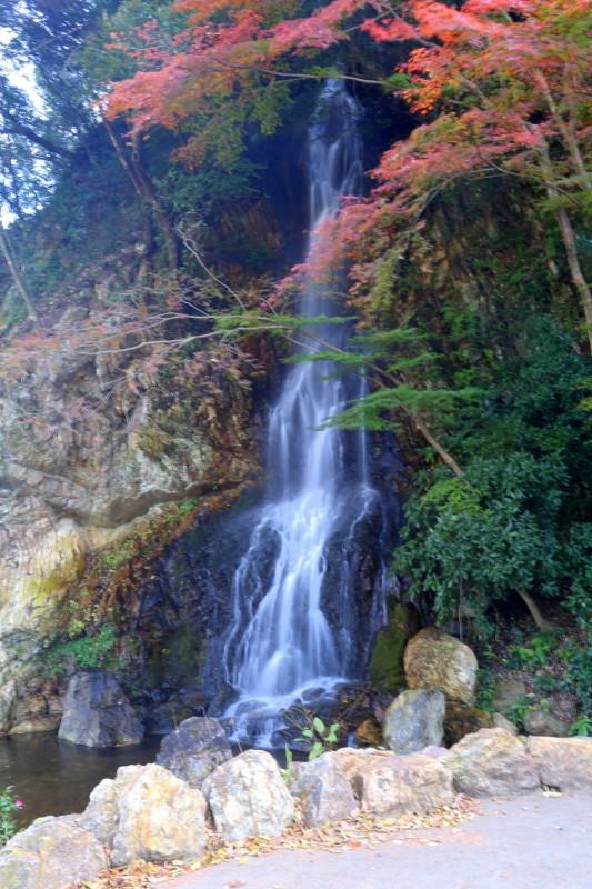 岐阜城とその周辺_f0367980_15095826.jpg
