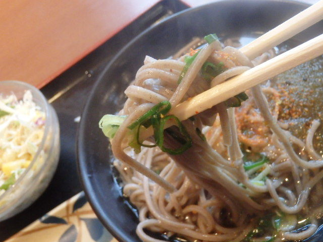 めしや食堂        大日店_c0118393_09342775.jpg