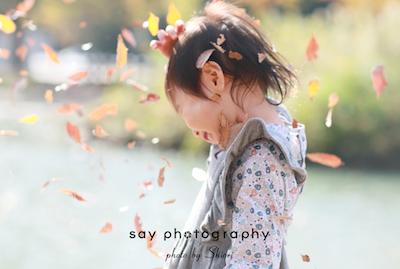 秋の日にもいろんな種類がありまして_d0220593_01151475.jpg