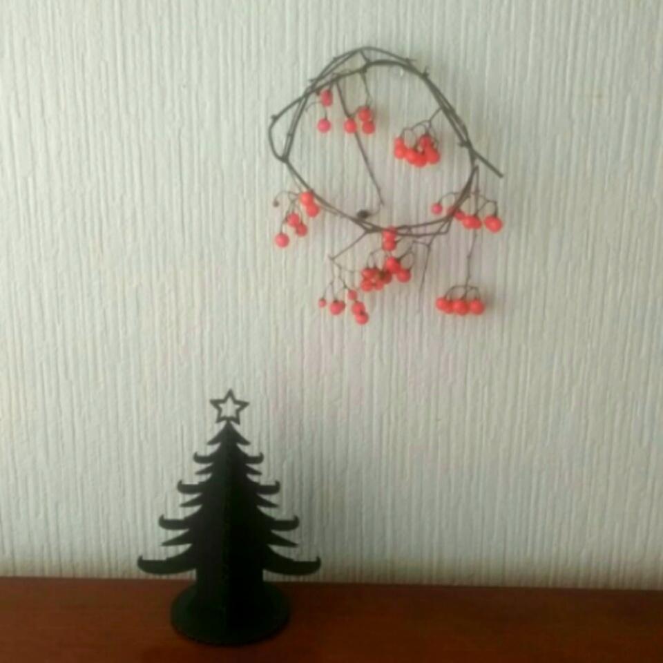 クリスマスの準備_f0326895_11253347.jpg