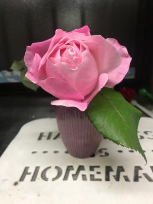 今年最後に咲いた薔薇と忘年会_a0134296_09294915.jpg