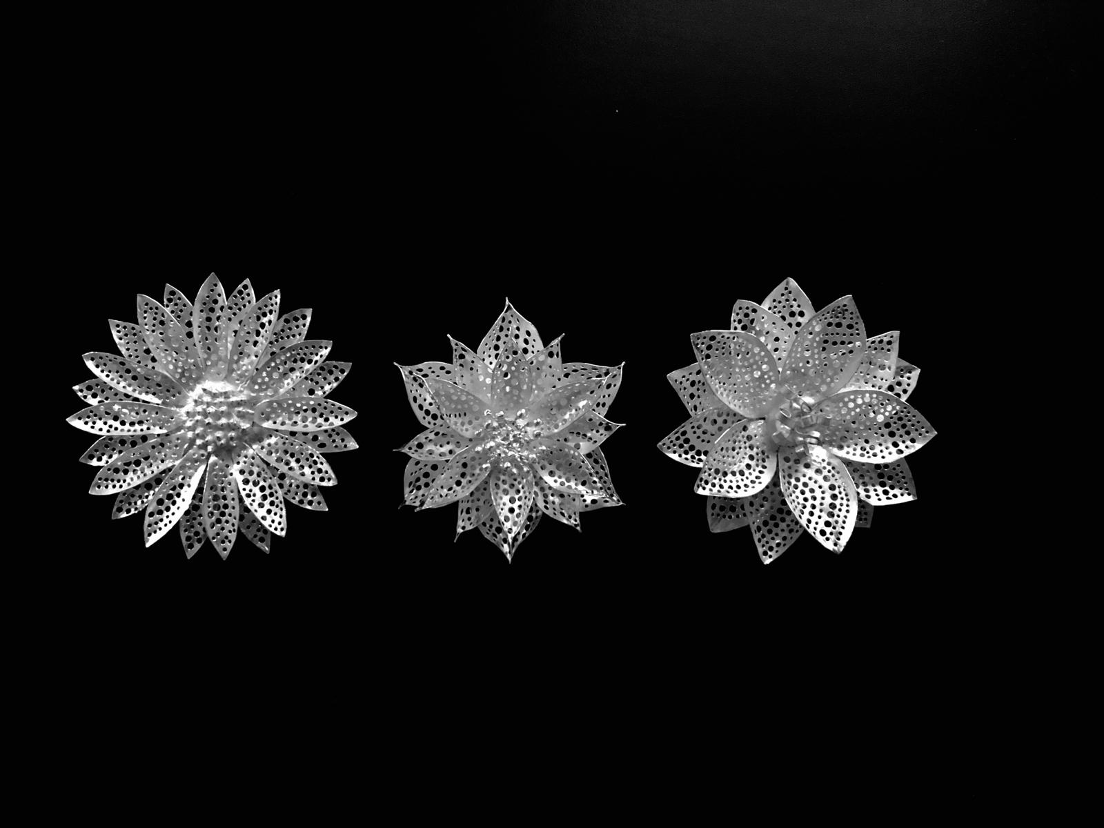 「第16回 銀粘土でつくる シルバーアクセサリーコンテスト国際展」_e0095418_12580802.jpg