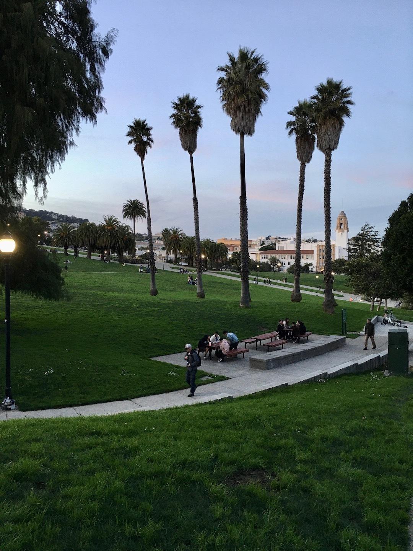 夕暮れ時の散歩道/ My Evening Walk In San Francisco_e0310424_15405999.jpg