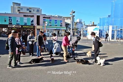 第26回マザーウルフ遠足 江ノ島レポート_e0191026_16020979.jpg
