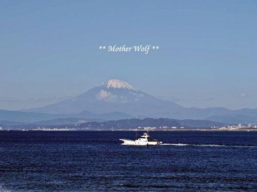 第26回マザーウルフ遠足 江ノ島レポート_e0191026_17180198.jpg