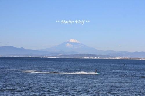 第26回マザーウルフ遠足 江ノ島レポート_e0191026_17221011.jpg