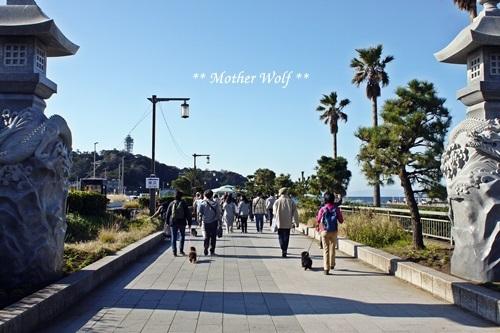 第26回マザーウルフ遠足 江ノ島レポート_e0191026_17530995.jpg