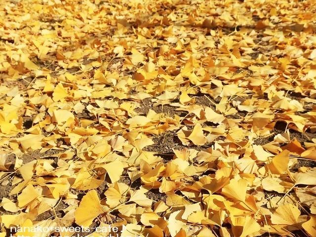 黄色の絨毯_d0147030_21055227.jpg