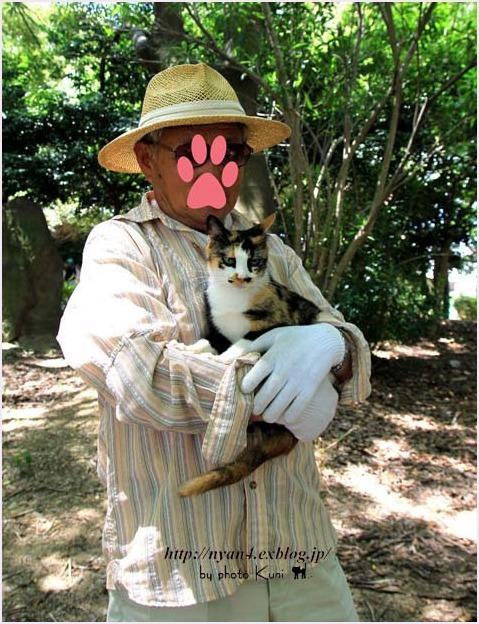 抱っこが出来る外猫さん_f0166234_23155406.jpg