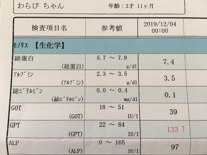 くぬぎわらびの健康診断_e0359436_10235315.jpeg