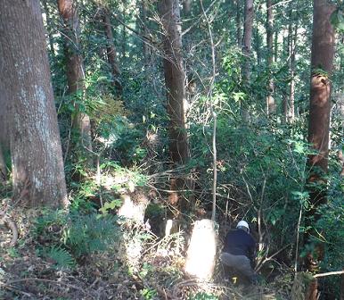 メルマガ:薪林業 (848号)_a0051539_20174589.png