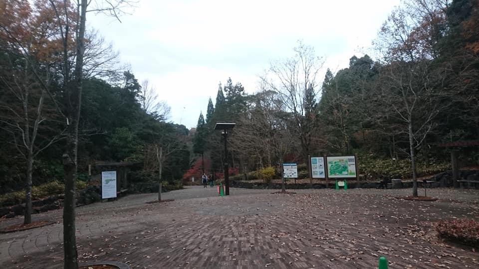 東山植物園へ♪_f0373339_14221672.jpg