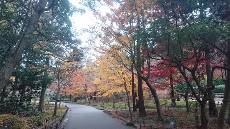 東山植物園へ♪_f0373339_14221892.jpg