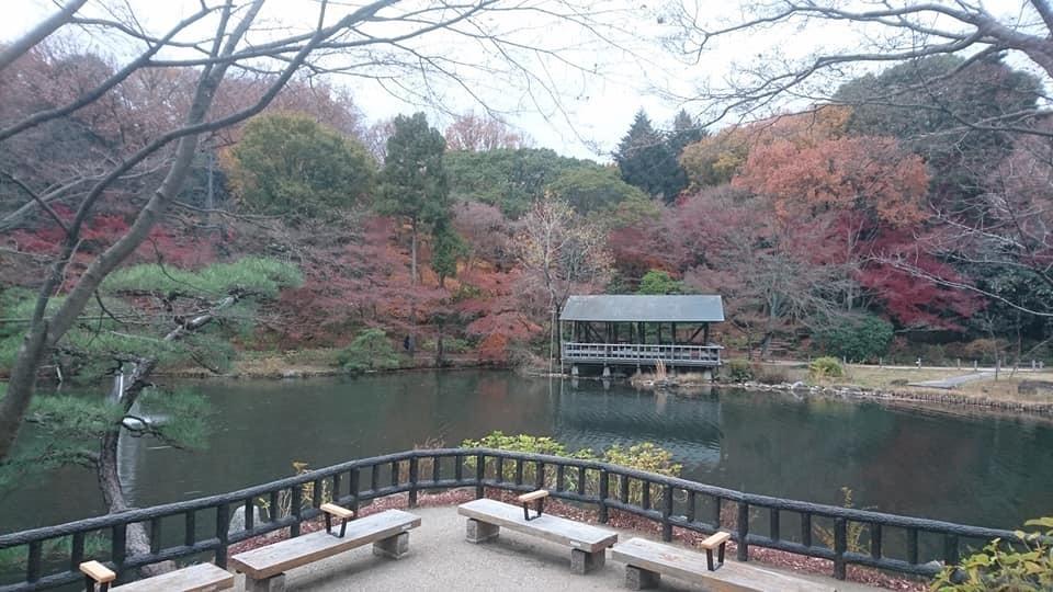 東山植物園へ♪_f0373339_14224749.jpg