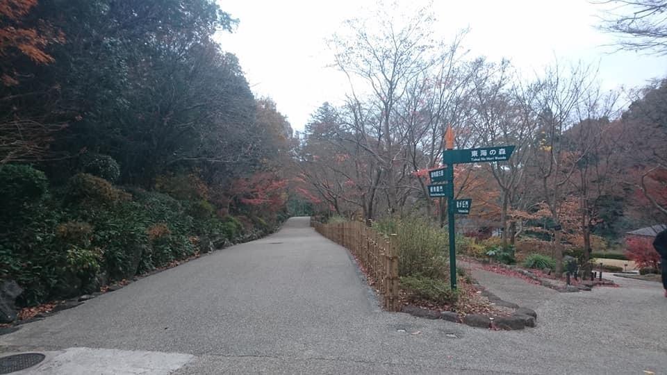東山植物園へ♪_f0373339_14224767.jpg