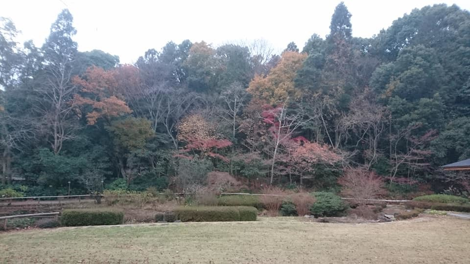 東山植物園へ♪_f0373339_14232824.jpg