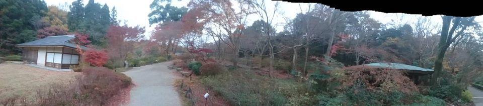 東山植物園へ♪_f0373339_14232885.jpg