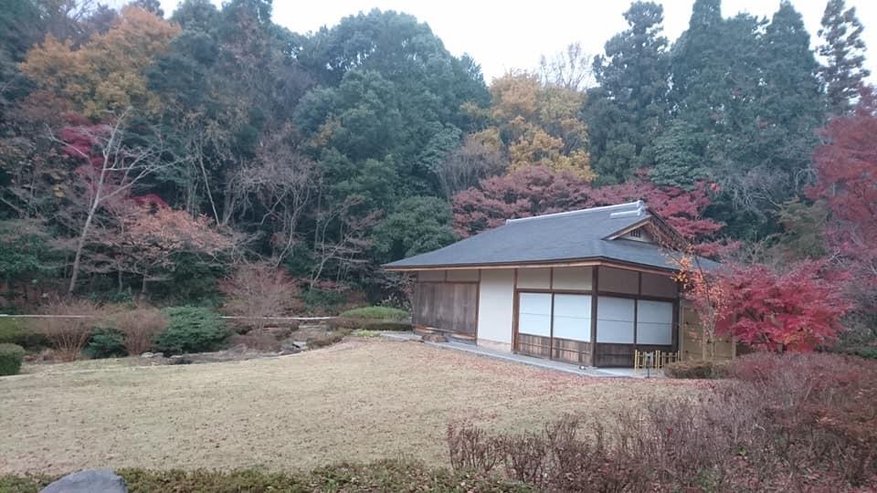 東山植物園へ♪_f0373339_14233228.jpg