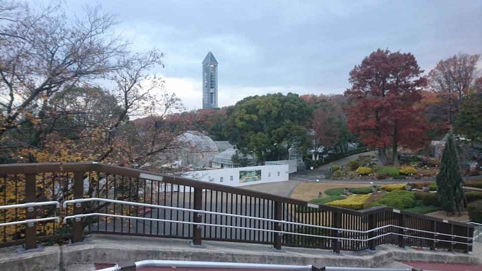 東山植物園へ♪_f0373339_14243817.jpg