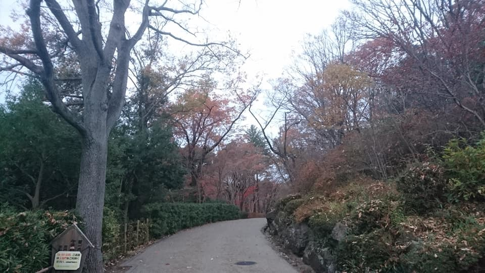 東山植物園へ♪_f0373339_14243825.jpg