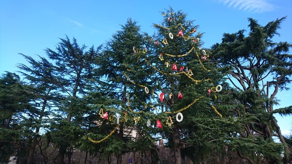 鶴舞公園スペシャルクリスマス2019_f0373339_14390277.jpg