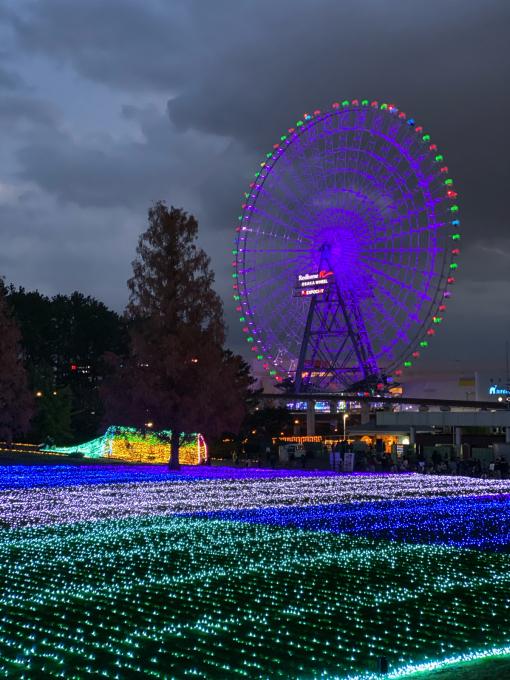万博公園はイルミネーションナイト真っ盛り_b0017844_09483931.jpg