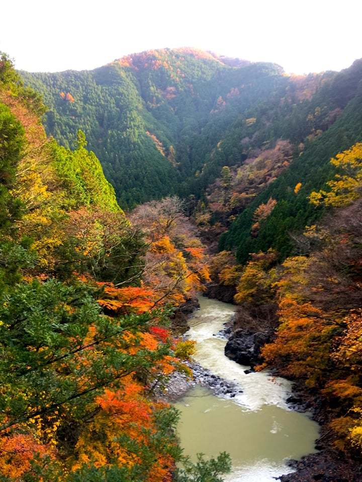美しい初冬の午後を_c0132052_01194345.jpg
