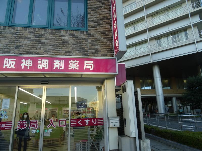 和歌山日赤へ定期検診に_c0108460_19032062.jpg