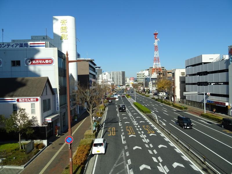 和歌山日赤へ定期検診に_c0108460_19032070.jpg