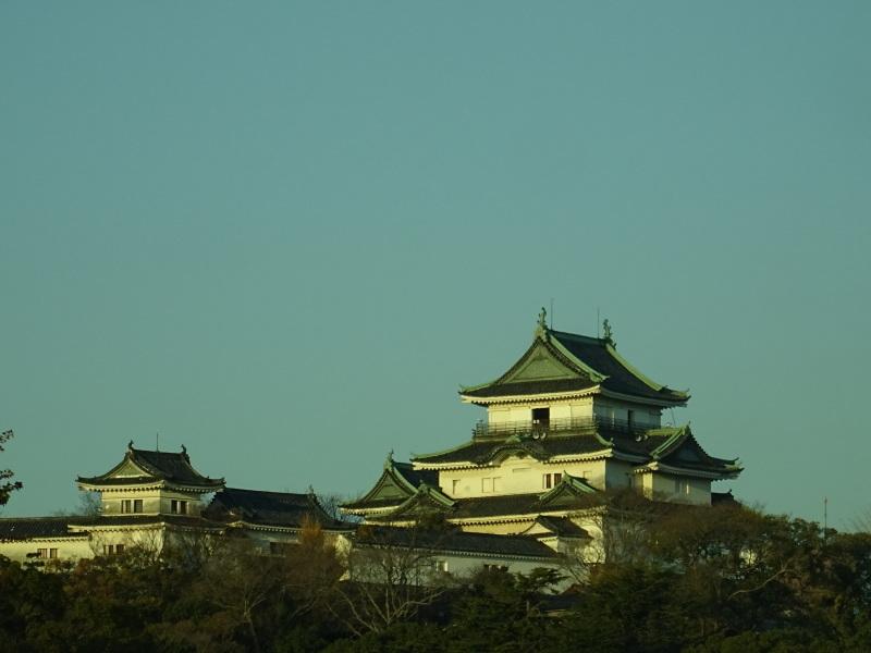 和歌山日赤へ定期検診に_c0108460_19042244.jpg