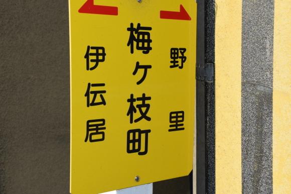 姫路の白線と花街_f0347663_16400913.jpg